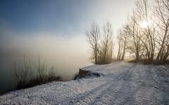 lake Zajarki (052) - foggy morning (Vlado Ferenčić) Tags: lakes lakezajarki zaprešić zajarki foggymorning fog foggy winter wintermorning hrvatska croatia nikond600 nikkor173528 vladoferencic vladimirferencic