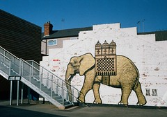 op - fargo ellie (johnnytakespictures) Tags: street elephant art film retail wall pen shopping graffiti paint village kodak decoration olympus ellie independent indie analogue halfframe coventry fargo westmidlands warwickshire ee3 gold200 retailers fargosfordstreet