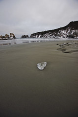 Salmon Cove,Newfoundland (Delena Jane) Tags: winter canada ice beach newfoundland sandy ngc pentaxart newfoundlandcoastline delenajane