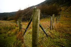 Friday means .... (Adrian Costigan.) Tags: ireland red irish green field canon fence eos friday