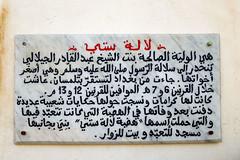 Mausole de Lala Setti    (habib kaki 2) Tags: algeria algerie  mausole  tlemcen
