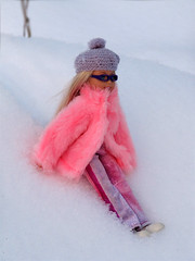 2164933 (dagber) Tags: winter snow stacie doll mattel