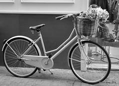 Bicicleta (Landahlauts) Tags: sevilla bicicleta seville andalucia andalusia andalusien sville andalousie andalusie siviglia  andaluzia andaluzja sewilla andaluzio    endls      endulus        andalouzia andalusiya   ishbiliya fujifilmxpro1 fujifilmfujinonxf18mmf2  capitaldeandalucia