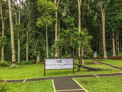 IMG_9710.jpg (Pete Finlay) Tags: bali indonesia id bedugul baturiti balibotanicgarden balitreetopadventurepark