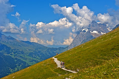 Climb  every mountain,the Eigertrail. Walking to Grindelwald. Looking at the Wetterhorn and the Grosse Scheidegg. Canton of Bern. Switzerland. No.7918. (Izakigur) Tags: alps alpes alpen alpi berneroberland bern berna berne ch cantonofbern d700 europa eiger europe eigertrail wetterhorn summer hiking helvetia high grindelwald grossescheidegg clouds walking izakigur jungfrau flickr feel nature green photography people kantonbern lasuisse laventuresuisse liberty landscape thelittleprince thejungfrauregion myswitzerland musictomyeyes nikkor nikond700 nikkor2470f28 eigergletscher ladygaga julieandrews happy soundofmusic topf25 topf500 500faves