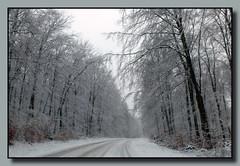 Doch noch etwas Winter im Saarland ... (p_jp55 (Jean-Paul)) Tags: schnee winter snow forest germany deutschland hiver neige wald allemagne fort saarland saarlorlux sarre