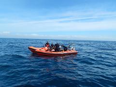 Plymouth-201506-53-HandDeeps-PassingRIB (Tony J Gilbert) Tags: macro marine underwater plymouth diving scylla jameseaganlayne nikond300 handdeeps wwwdivingplymouthcom ceeking hilseapointrocks