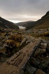 Step this way ! (Adrian Costigan.) Tags: bridge ireland irish mountain lake nature water scenery lough path scenic hills glendalough camhino