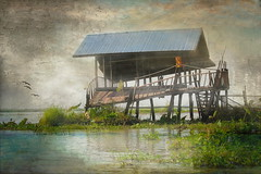 Broken Shed (ulli_p) Tags: light lake art texture nature water colors buildings landscape thailand asia southeastasia colours udonthani textured isan likeapainting aworkofart flickraward texturedphoto ruralthailand awardtree exoticimage canoneoskissx5