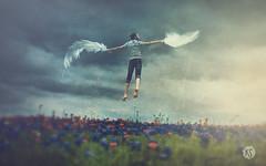 """The Sky Is The Limit"" ( 2016 by Keren Stanley) (keren_stanley) Tags: flowers portrait birds miniature wings flight surreal levitation expressive conceptual winterstorm"