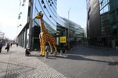 Big toys (Legoland) (Pascal Volk) Tags: berlin architecture lego potsdamerplatz architektur giraffe 16mm modernistarchitecture modernarchitecture berlinmitte berlintiergarten modernearchitektur komplex buildingcomplex canonef1635mmf4lisusm gebäudekomplex canoneos6d baukomplex