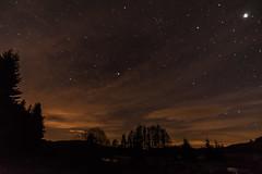 Galloway Forest Park-9259 (pewatts) Tags: stars outdoors scotland april nightsky darksky starrynight dumfriesandgalloway gallowayforestpark