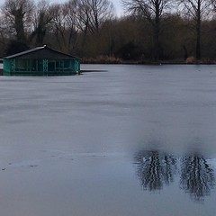 This morning #shed #lake #ice #trees... (joyaofchiba) Tags: trees lake ice water shed aquadrome wd3 uploaded:by=flickstagram instagram:photo=912849542314256457399195313