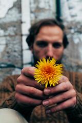 Kunst Blume (Djuneid) Tags: portrait man flower berlin nature yellow zeiss canon hope 50mm model hands mood outdoor 14 poetic tempelhof planar neukolln vsco 5dmkii