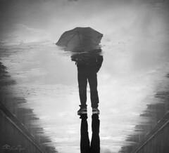 """Encontrar la belleza en das grises"" (Lola Tejada) Tags: black blanco nature gris lluvia negro picture bn silueta imagen reflejos"