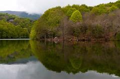 Santa Fe del Montseny (Gatodidi) Tags: barcelona santa parque naturaleza landscape agua nikon arboles natural paisaje pantano catalunya fe catalua rocas embalse piedras montseny d90