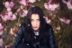 Manon (Anas Nannini) Tags: light portrait woman game flower rebel spring emotion bokeh expression cherryblossom nikond810 petzval58