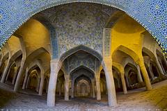 Prayer Hall (T   J ) Tags: iran fujifilm shiraz xt1 teeje samyang8mmf28