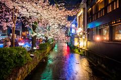 sakura '16 - cherry blossoms #19 (Kiyamachi, Kyoto) (Marser) Tags: longexposure flower japan cherry kyoto raw nightlights fuji   sakura nightview lightroom kiyamachi  xt10