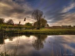 The River Bure at Oxnead (Ian Gedge) Tags: uk england reflection english water river bure countryside still britain farm norfolk british brampton eastanglia