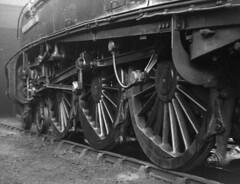 Gresley A4 60034 Lord Faringdon, Dundee Tay Bridge shed, 62B (rac819) Tags: motion steam a4 railways britishrailways steamlocomotives valvegear 60034 uksteam walschaerts brsteam lordfaringdon