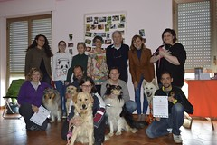 Partecipanti (DanielOssino_EducatoreCinofilo) Tags: family dog white dogs cane collie famiglia shepherd swiss first medical aid together canino pronto insieme bianco cani firstaid pastore soccorso partecipanti medicalaid svizzero prontosoccorso whiteswissshepherd partecipants swissshepherd pastoresvizzero pastoresvizzerobianci