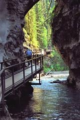 Promenade dans le canyon (joelledewael) Tags: canada johnstoncanyon