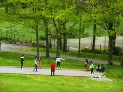 2016-04-25 Frat  la Cit Saint-Pierre 002 (Cit Saint-Pierre) Tags: sport frat petanque jeune 2016 citsaintpierre