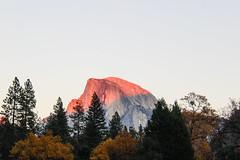 Half Dome Glow (merylharumi) Tags: camping autumn rocks hiking yosemite halfdome yosemitenationalpark sierranevada alpenglow