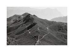 * (Daniel Espinoza) Tags: mountains alps film landscape schweiz switzerland suisse suiza fineart paisaje 35mmfilm pelicula analogue landschaft nikonfe analogphotography bwphotography analogica foma400 onlyfilm