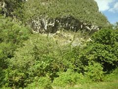 """Tropfender"" Mogote-Kalkstein (fotoculus) Tags: cuba vinales karst kuba rundreise mogotes kalkstein tropfstein"