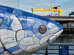 Belfast icons (D-j-L) Tags: sculpture fish canon river unitedkingdom crane belfast gb northernireland bigfish s100 harlandandwolff