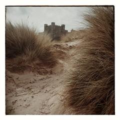 The sand dunes to Bamburgh Castle (S.R.Murphy) Tags: england seascape beach dunes northumberland coastal squareformat bamburgh bamburghcastle coastallandscape snapspeed samsungs4 samsunggti9505