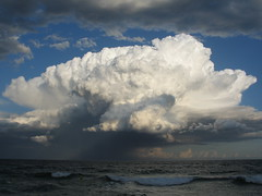 Tempestes 16 - Jordi Sacasas
