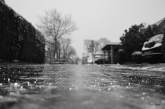 Freezing rain (Rene Mensen) Tags: winter holland ice netherlands rain nikon freezing glaze dunja drenthe emmen mensen 2016 d5100