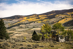 remembering fall (andy_8357) Tags: blue trees sky orange foothills painterly green fall colors grass yellow pine clouds fence de grey wooden log cabin san sony sunny down run sage ridge faded changing valley lone luis lonely homestead cristo alpha aspen juniper slope sangre dilapidated nex a6000 sel55210 ilce6000 ilcenex