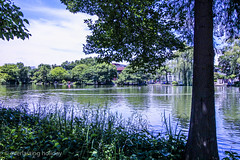 Shakujii Park-0003 (everlasting holiday) Tags: sky green pond