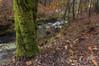 Ruta do Rio San Martiño (jojesari) Tags: sigma otoño 1020 pontevedra suso meis polarizador efectoorton jojesari rutadesenderismodemeis rutadoriosanmartiño ar116g