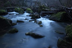 (nwtravelpictures) Tags: longexposure canon landscape eifel landschaft langzeitbelichtung ndfilter teufelsschlucht tokina111628 irrelerwasserflle canon70d phorexbyjaworskyj