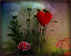 Tendre nostalgie... (Huguette T.) Tags: flower texture fleur valentinsday saintvalentni