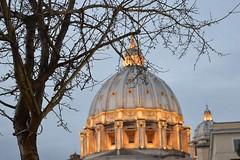 San Pietro, Rome. (unciclamino) Tags: rome tree lights basilica sanpietro saintpeter