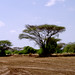 Fejej area (2005)