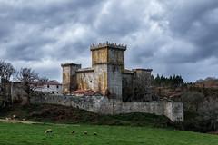 Debajo del Castillo (chuscordeiro) Tags: sky españa castle canon galicia cielo castelo 7d invierno torreon turismo lugo castillo caminodesantiago 1022 xiv patrimonio airelibre irmandiños pambre palasderei
