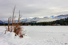 Alta Lake (mad_ruth) Tags: trees sky lake snow canada mountains ice clouds whistler frozen britishcolumbia