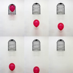Untitled _ Balloon, Steel _ Dimensions variable