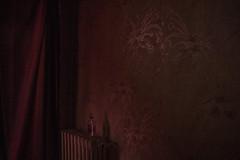 1 (manon.ternes) Tags: red paris photography student photographie photos lumire couleurs cit alcool numrique ambiance motion gagarine