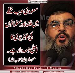 (ShiiteMedia) Tags: pakistan   shiite                        shianews          shiagenocide shiakilling      shiitemedia shiapakistan mediashiitenews         httpwwwshiitemedianeturindexphp10084shia