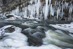 Crystal Palace (debbie_dicarlo) Tags: winter cold ice nature river landscape icicles crystalpalace cuyahogariver winterscene icyriver sceniclandscape