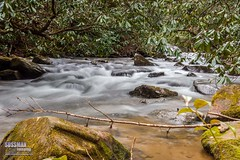 Wildcat Creek (The Suss-Man (Mike)) Tags: longexposure nature water creek georgia rocks falls cascades northgeorgia slowshutterspeed wildcatcreek northgeorgiamountains rabuncounty thesussman sonyslta77 sussmanimaging