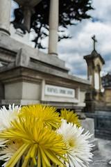 TUMBA RAFAEL URIBE URIBE (oscar corts martinez) Tags: flowers flores colombia bogota cementerio flor tumba muerte rafael uribe mausoleo